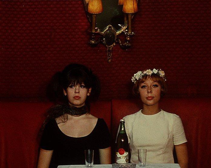 daisies 1966