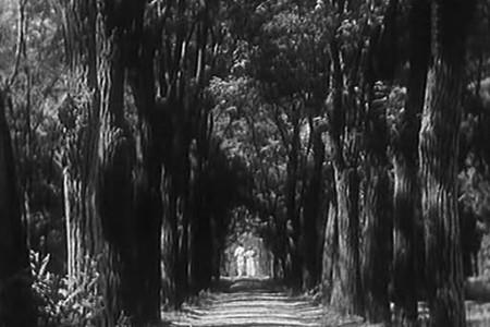 """Кадр из фильма """"Строгий юноша"""", реж. Абрам Роом"""
